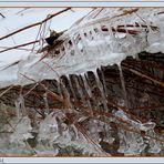 Eispalast  (mit Gedicht)