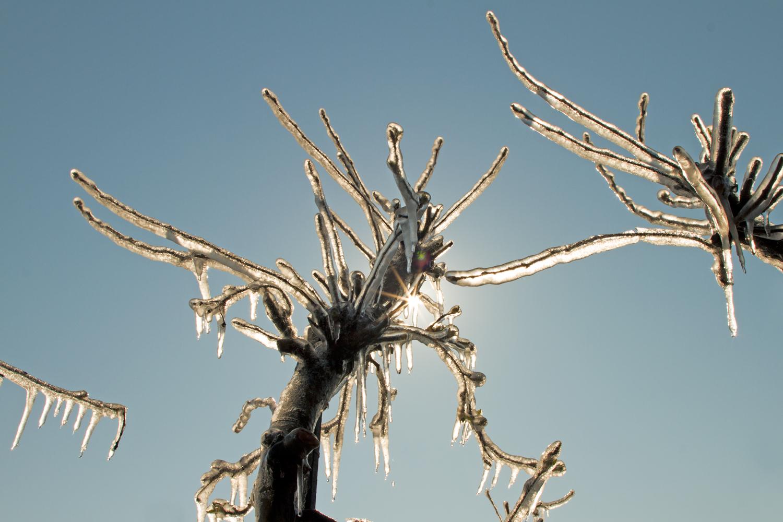 Eisplantage-5