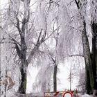 Eisregen Dez. 1988, Dorf Buke