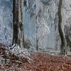 EISREVUE am Großen Feldberg im Taunus (FullHD 13)