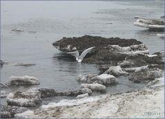 Eisschollen auf Usedom,