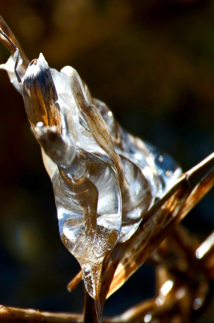 Eiszeit 2