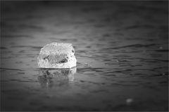 Eiszeit (4)