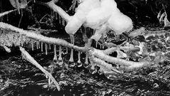 """""""Eiszeit"""" in der Partnachklamm_0514"""