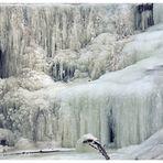Eiszeit IV