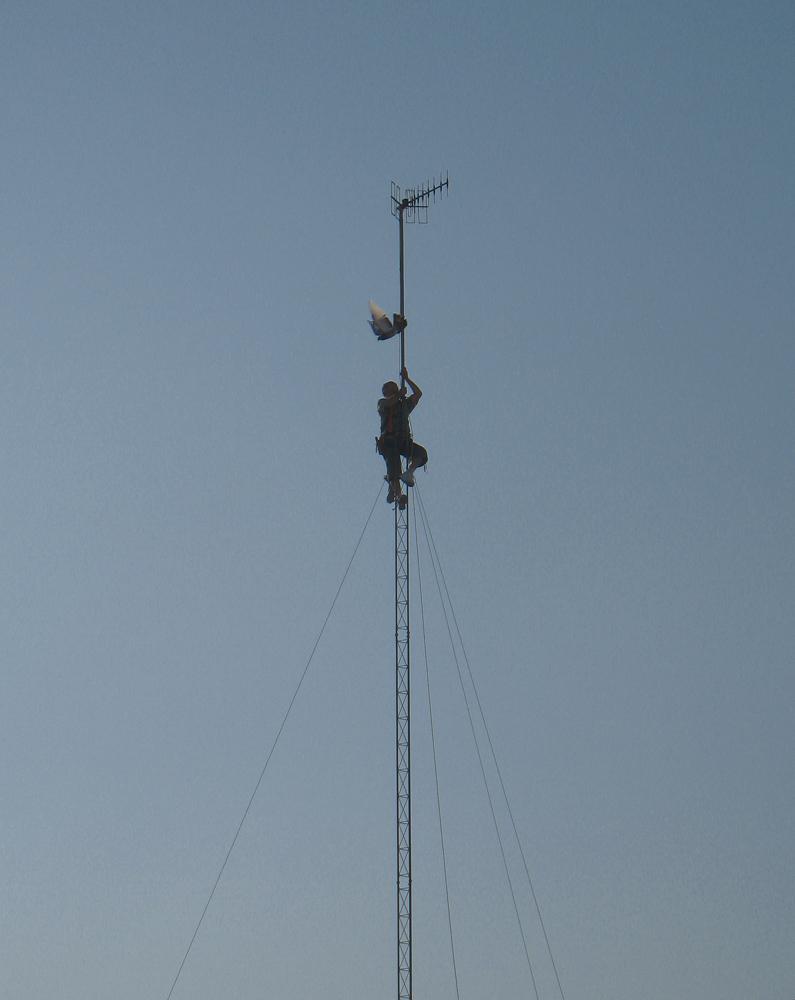El antenista, la antena y la paloma.