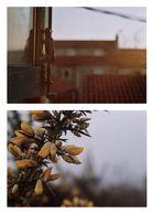 el atardecer hace reflejar toda la casa en amarillo y naranja