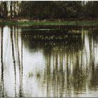 El batir de alas en la lejanía rompe el silencio de la última mañana de invierno