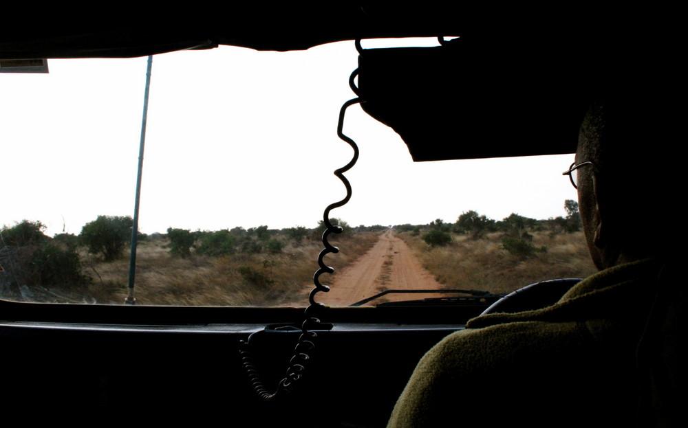 El camino de un Safari
