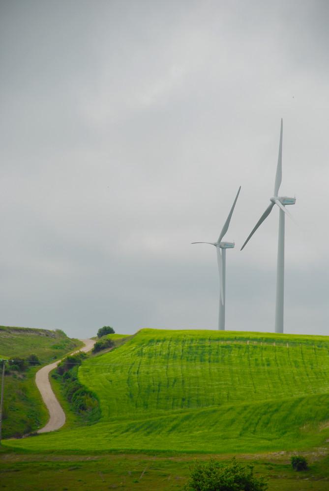 el camino del viento