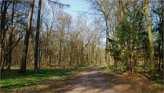 El camino # Der Weg