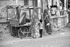 El carrito