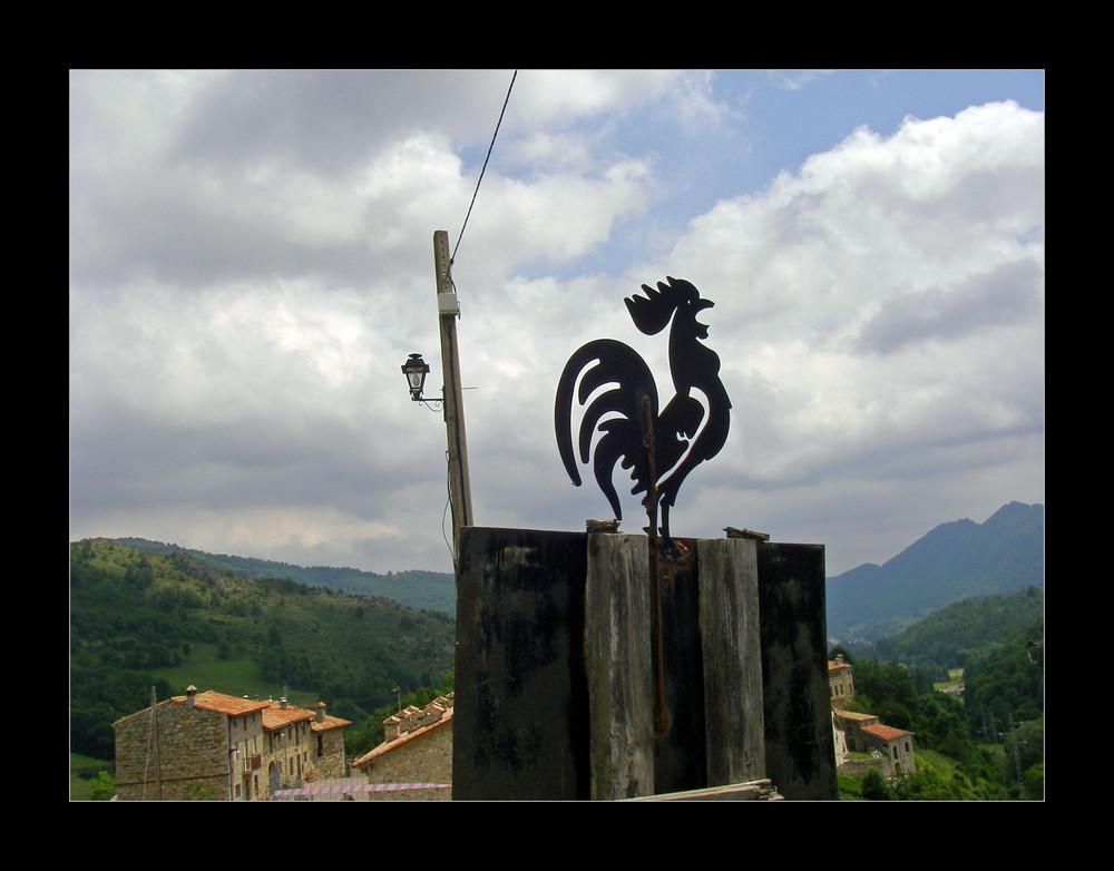 El gallo en un pueblo de los Pirineos cerca de Vilallonga (Gerona)