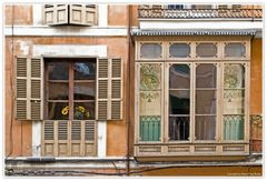 El Girasol en la Ventana (Die Sonnenblume im Fenster)