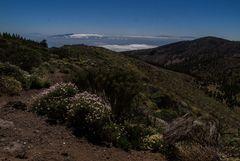 El Hiero, La Gomera & La Palma