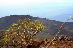 El Hierro, die Westküste
