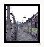 EL HOLOCAUSTO NAZI-2 LAS ALAMBRADAS - AUSCHWITZ