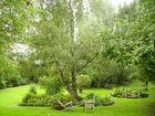 el jardin del Eden