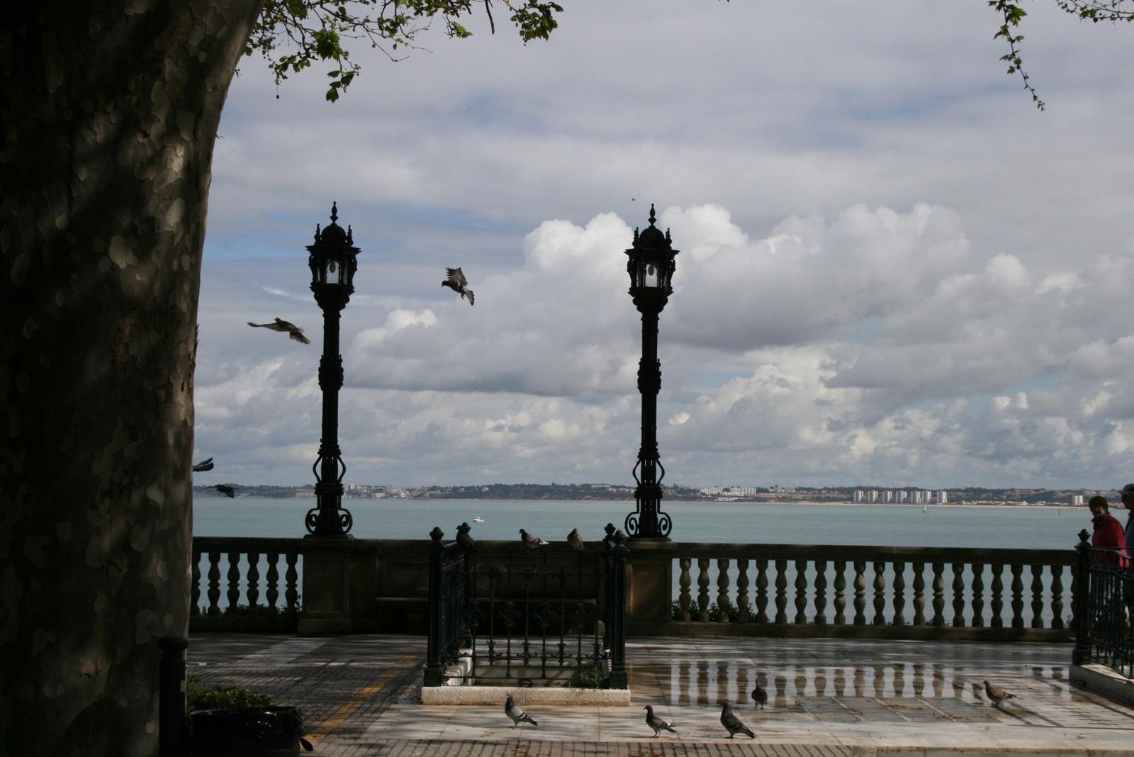 El mar a vista de palomas