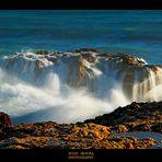 El Mar con Pasión