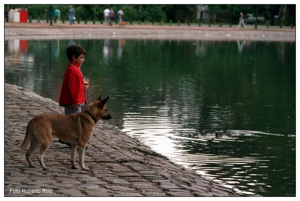 El Niño, el perro y la nutria