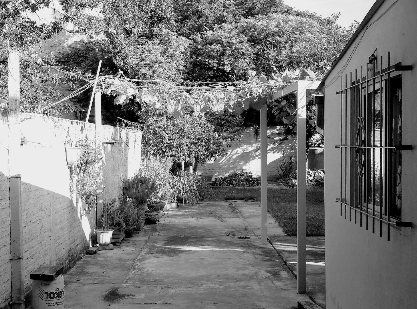 El patio