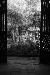 El patio1