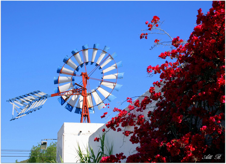 ,,,,,el pequeño molino de viento