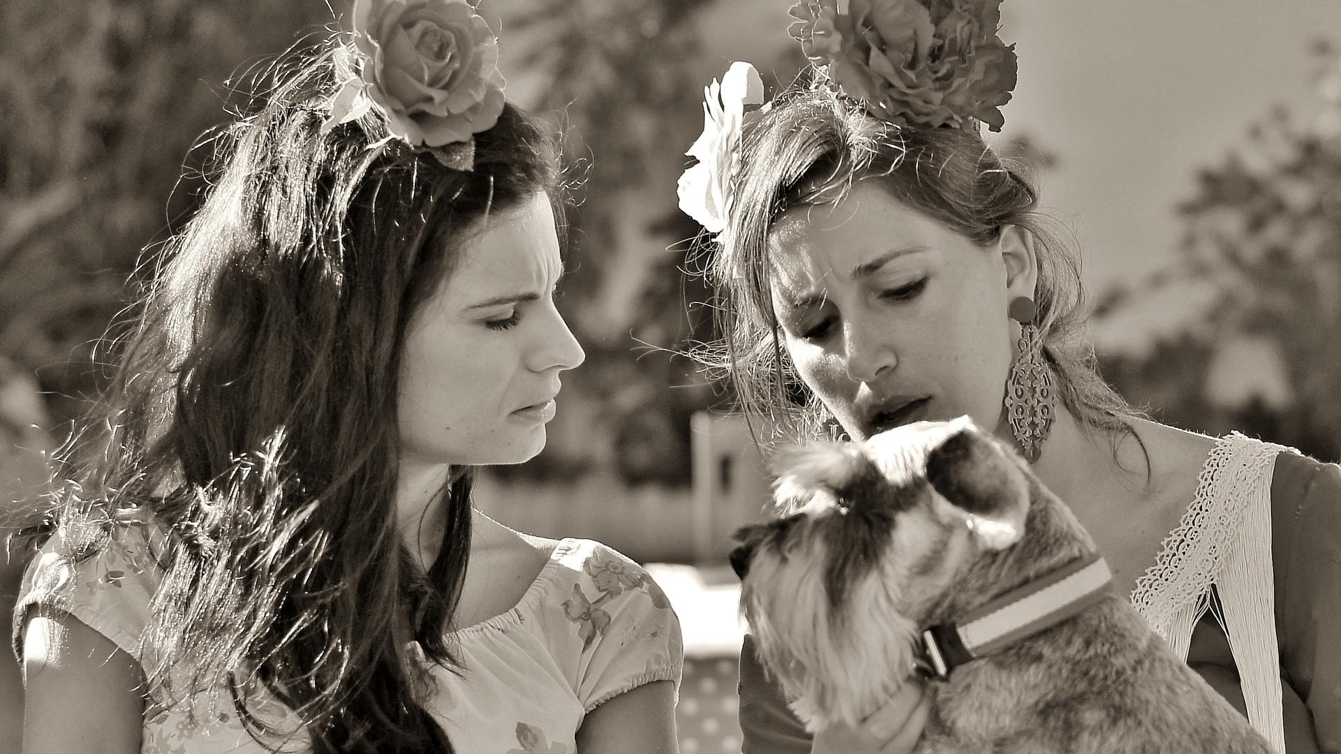 El perro andaluz (sepia)