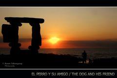 El perro y su amigo/ The dog and his friend