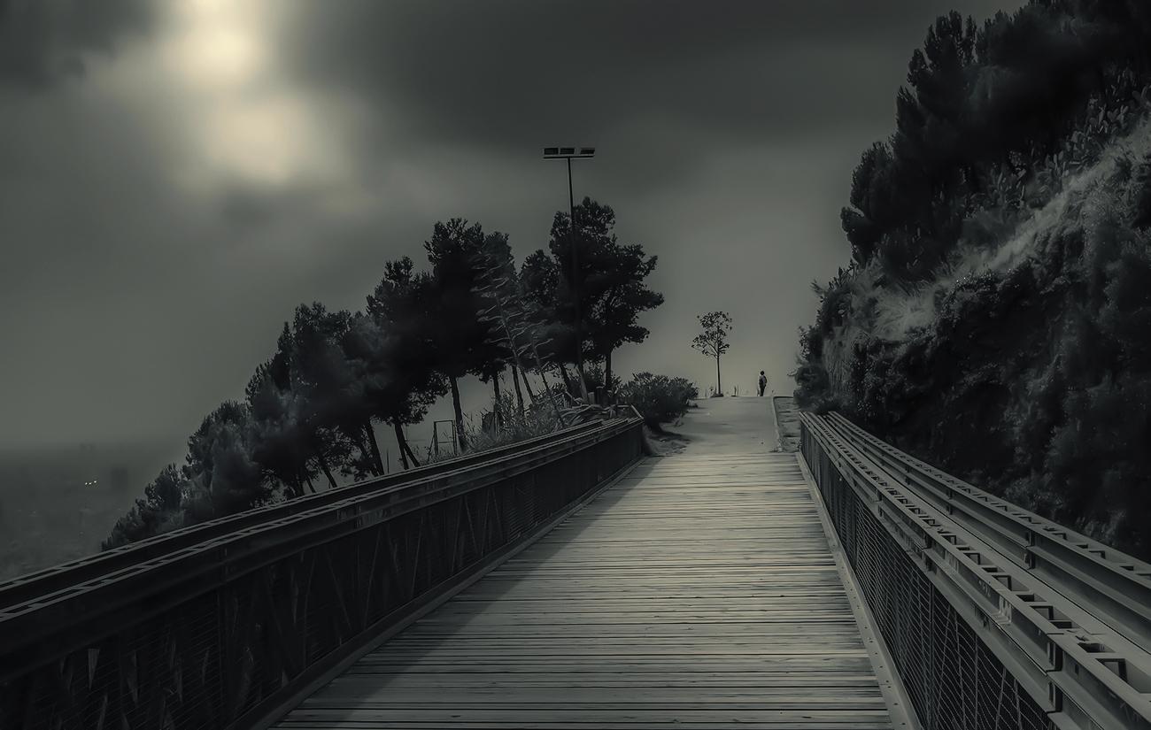 """""""El puente """""""