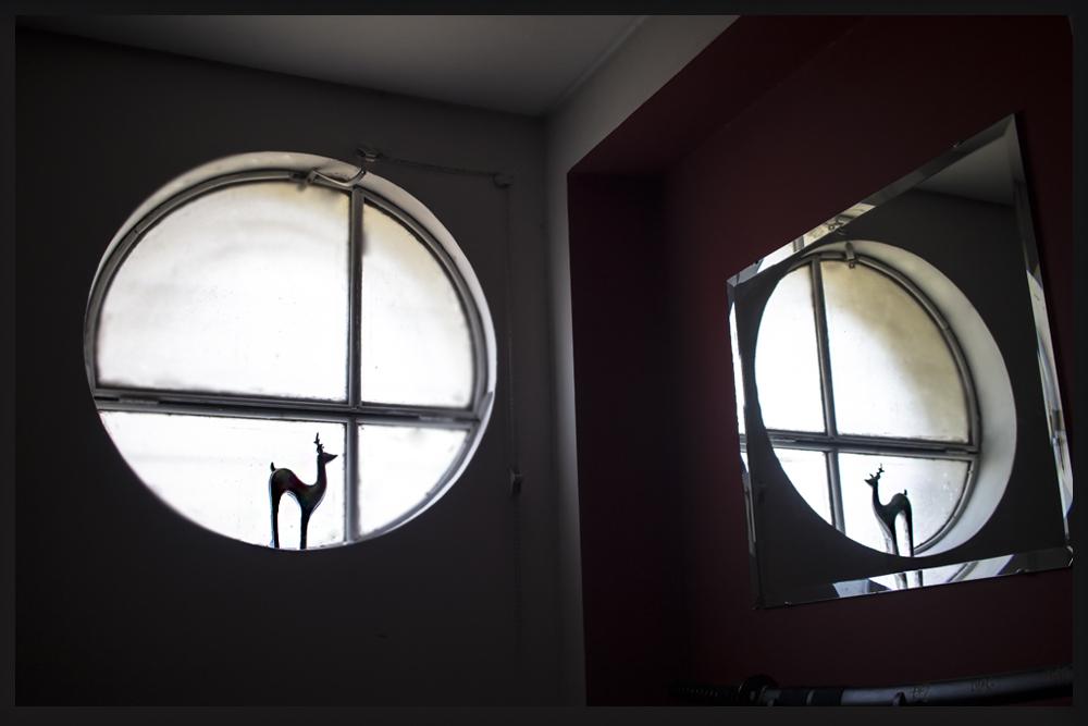 El reno en la ventana