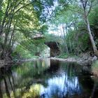 el rio a su paso por las Mestas