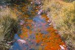 El río agostado