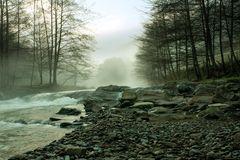 El río de la vida 2