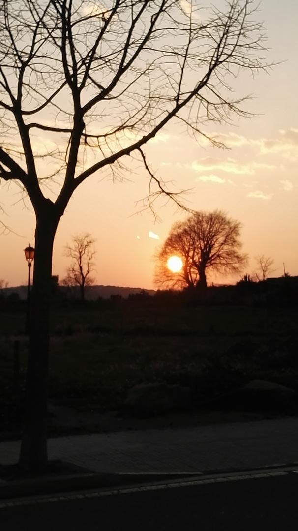 El Sol se depide