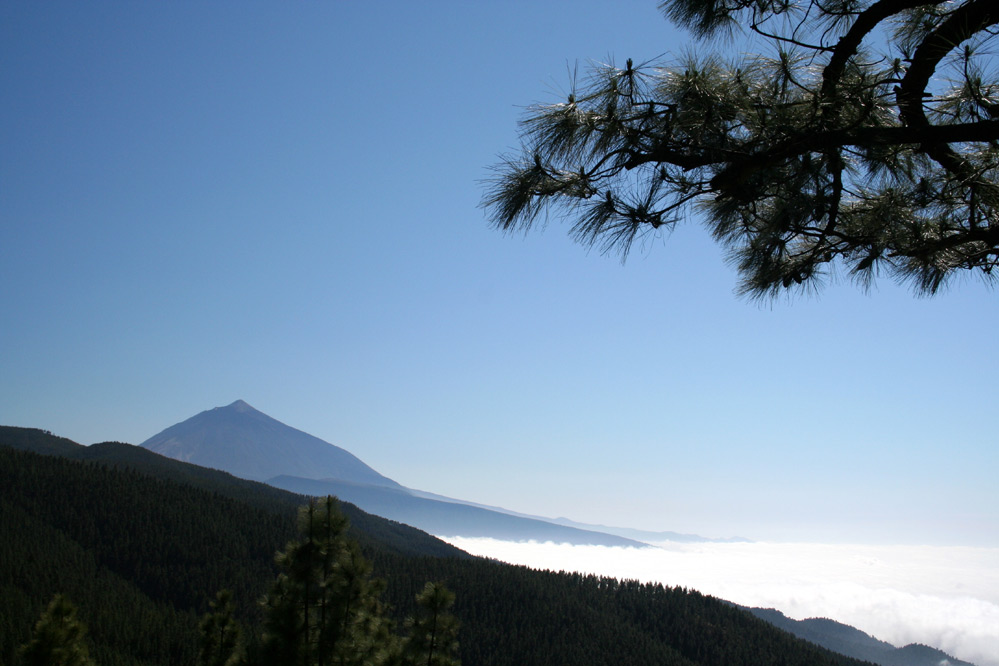 El Teide 2