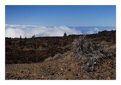 El Teide - On the Way Up - Auf dem Weg hinauf