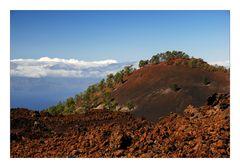 El Teide - On the Way Up - Auf dem Weg nach Oben 2