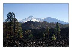 El Teide  - On the Way Up / Auf dem Weg nach Oben