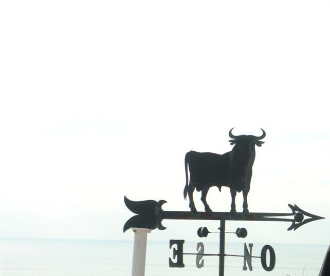 El Toro y el Viento