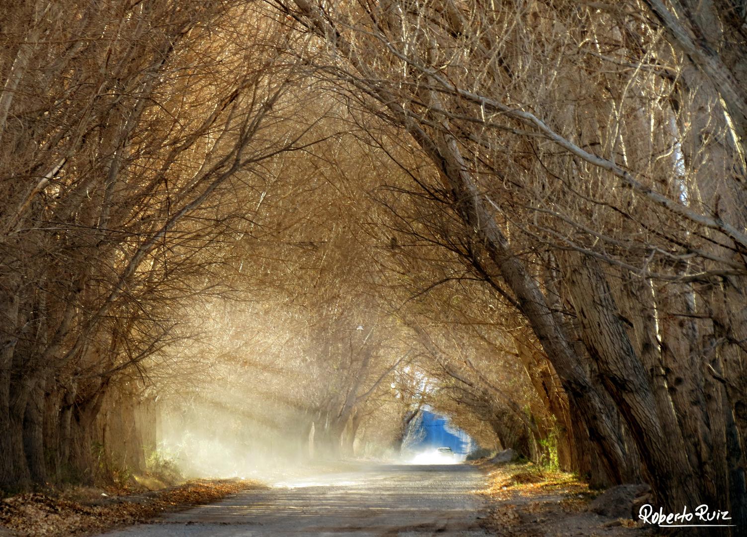 El Túnel encantado