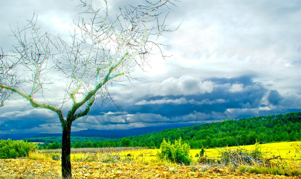 El viaje de las nubes