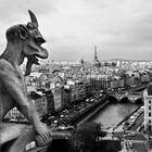 El vigilante de París.