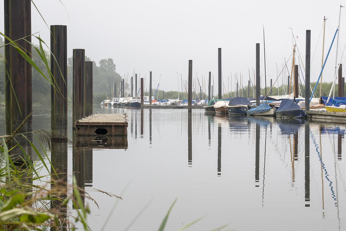 Elbe am Ende des Sommers