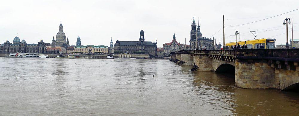 Elbe am Terrassenufer Dresden