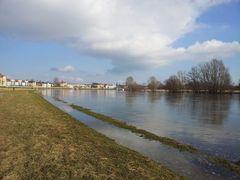 Elbe bei Dresden-Pieschen