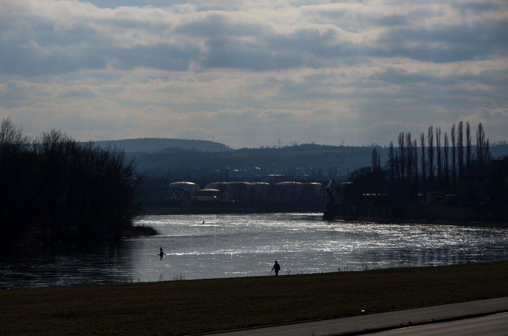 Elbe im Gegenlicht