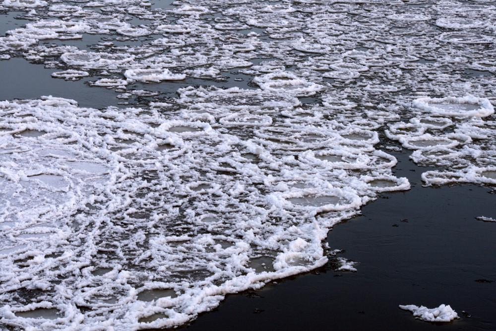 Elbe - Winter II