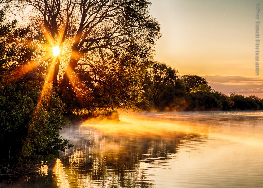 Elbmarsch Sonnenaufgang